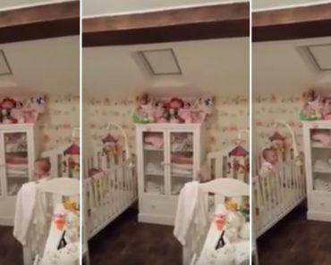 Mãe Pensava Que Os Seus Bebés Estavam a Dormir, Mas Eles Tinham Outras Ideias 12