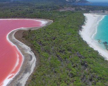 Conheça o Maravilhoso Lago Rosa Australiano, Que Parece Quase Um Batido De Frutas 2