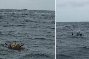 Mina Marítima a Flutuar Ao Largo Da Ilha Berlenga Encontrada Por Pescadores 9