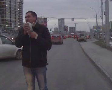 Gatinho De Rua é Resgatado Depois De Ver As Suas 9 Vidas Passarem-lhe à Frente Dos Olhos 4