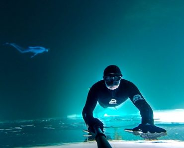 Mergulhador Capta Imagens Impressionantes Em Lago Congelado No Canadá 8