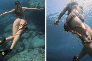 Polvo Não Perdeu Tempo Para Se Aproveitar De Mergulhadora Ao Colar-se à Sua Coxa 4