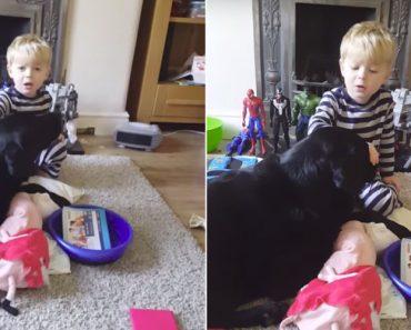 Encantador Momento Em Que Menino Canta Música De Embalar Para o Seu Cão 9