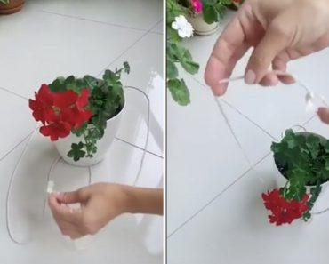 Veja Esta Simples e Rápida Técnica De Suspender Vasos Usando Apenas Um Cordão 6
