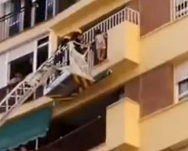 Bombeiros Salvam Criança Pendurada Na Varanda De Um Oitavo Andar De Prédio Em Málaga 7