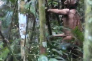Revelado Vídeo De Último Sobrevivente De Tribo Indígena Isolada 10