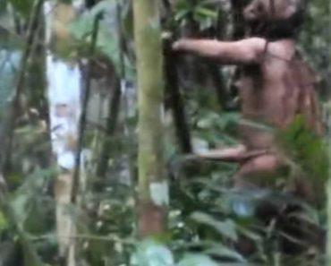 Revelado Vídeo De Último Sobrevivente De Tribo Indígena Isolada 3