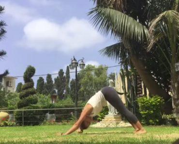 Vídeo De Yoga Fica Arruinado Com a Excessiva Descontração De Cão 9