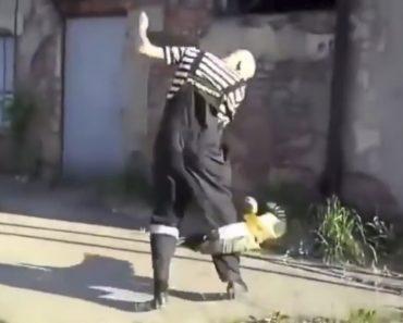 Homem Tenta Afugentar a Família De Patos Errada 1