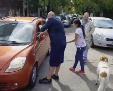Mulher Apanhada a Abandonar Cão é Humilhada Por Condutor Atento a Toda a Situação 1