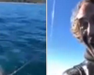 Polvo Surpreende Casal Que o Tentava Pescar Com Inesperado Esguichamento 4