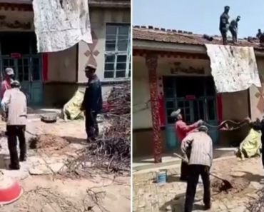 Trabalhadores Da Construção Civil Usam Excelente Técnica Para Reparar Telhado Sem Se Cansarem Muito 2