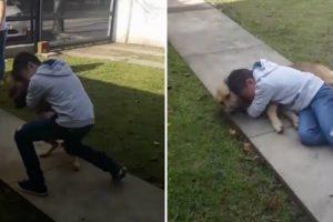 Menino Não Contém a Emoção Ao Reencontrar o Seu Cão Após Estar 8 Meses Desaparecido 8