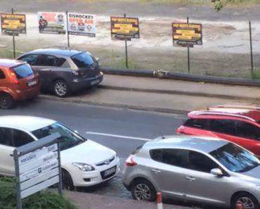 """Homem Enfrenta o Maior Desafio Da Sua Vida: Estacionar o Carro Num Lugar """"Bem Apertado"""" 5"""
