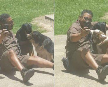Trabalhador Da UPS Interrompe Trabalho e Tira Selfie Com Cães 5