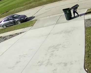 """Caixote Do Lixo """"Revolta-se"""" e Ataca Adolescente 6"""
