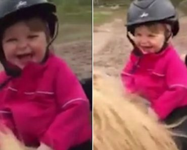 A Reação Desta Menina a Andar a Cavalo Pela Primeira Vez Vai Alegrar o Seu Dia 35