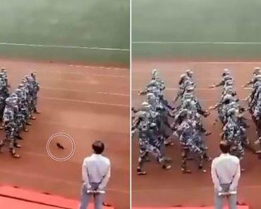 Mulher Perde Sapato Durante Parada Militar, Mas Consegue Calçá-lo Sem Perturbar a Marcha 8