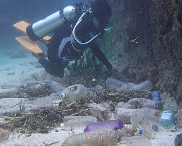 Vídeo Alarmante Mostra a Quantidade De Lixo Plástico Encontrado No Fundo Do Oceano 7