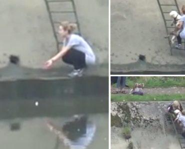 Mulher Salva Cão Após Cair Em Barragem 3