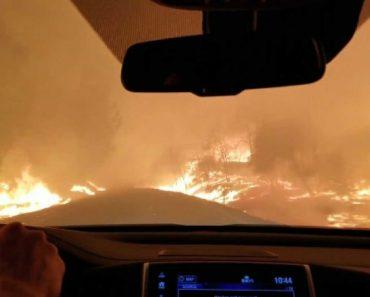 Família Arrisca Conduzir Entre As Chamas Para Fugir a Incêndio 2