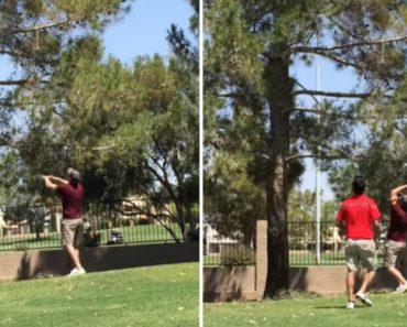 Jogador De Golfe Frustrado Atira Taco De Gole Ao Ar e Fica Ainda Mais Frustrado Ao Tentar Recuperá-lo 3