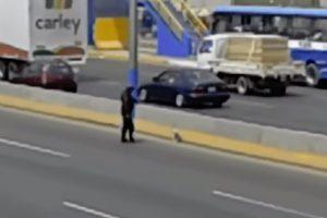 Polícia Pára o Trânsito Em Estrada Movimentada Para Resgatar Cão Aterrorizado 10