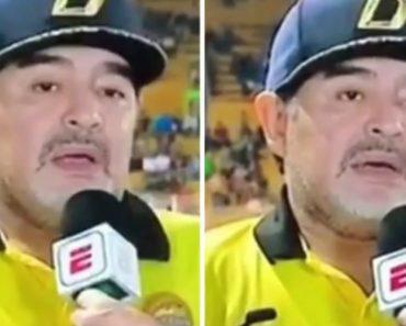 A Entrevista Mais Surreal: Maradona Tentou Falar e... Saiu Isto 2