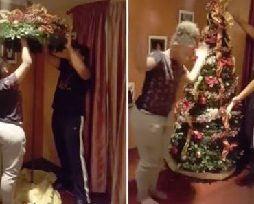 Família Mostra Como é Possível Ter Uma Árvore De Natal Perfeitamente Enfeitada Em 1 Minuto 7