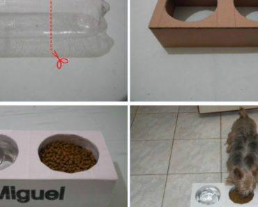 Como Fazer Um Comedouro Barato Para o Seu Animal De Estimação 2