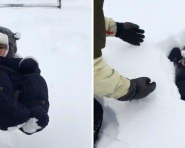 Pai Nunca Imaginou Que a Neve Fosse Engolir o Seu Bebé 9