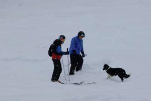 Cão Aproxima-se De Esquiadores Para Uma Missão Muito Importante 8