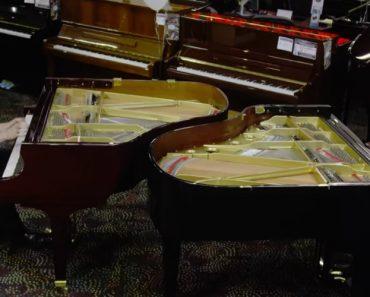 Dois Pianistas Entram Numa Loja: O Desafio Entre Eles Deixa Os Clientes Sem Palavras 7
