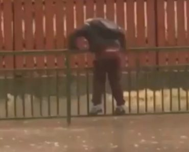 Estudante Faz Enorme Esforço Para Não Se Molhar Enquanto Atravessa Rua Alagada 5