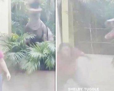 Mãe Tem Tremendo Susto  Ao Posar Para a Foto Ao Lado De Dinossauro 2