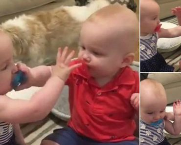 Bebés Divertem-se a Roubar a Chupeta Um Do Outro 4