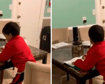 Mãe Apanha Filho De 6 Anos Em Flagrante a Usar Alexa Para Obter As Respostas Dos Trabalhos De Casa 8