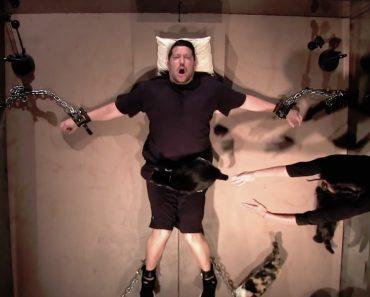 Homem Com Medo De Gatos é Submetido a Experiência Aterrorizante 9