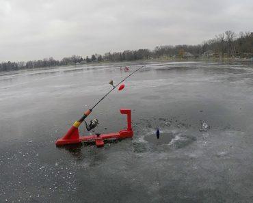 Peixe Rouba a Cana De Pesca De Pescador Que Cometeu o Erro De Deixar a Cana No Suporte 3