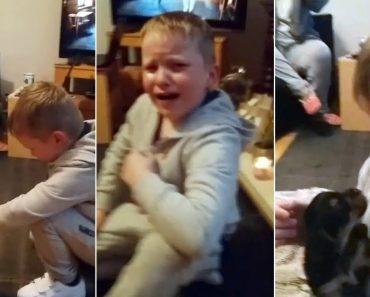 A Emocionante Reação De Um Menino Autista Ao Conhecer o Seu Novo Amigo 1