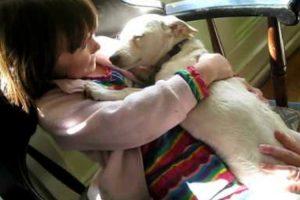Cadela é Resgatada Da Morte Certa e Tem Reação Emocionante Junto Das Pessoas Que a Salvaram 10