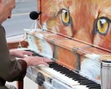 Nunca Imaginaram Que Algo Assim Acontecesse Quando Colocaram Um Piano Na Rua 1