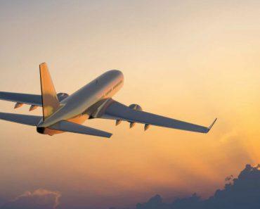 Avião Obrigado a Regressar Depois De Mãe Se Esquecer De Bebé No Aeroporto 5