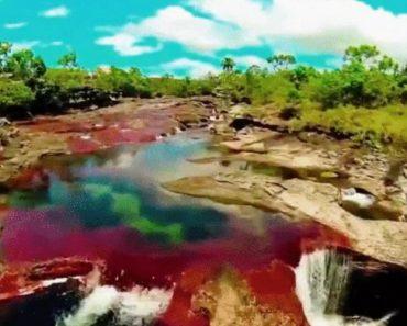 Conheça o Rio Mais Colorido Do Mundo 3