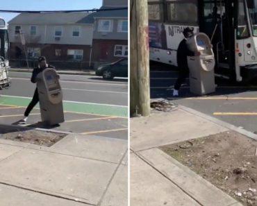 Homem Rouba Uma Caixa Multibanco e Tenta Levá-la Para Casa… De Autocarro 2