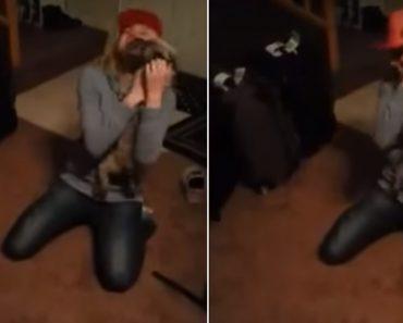 Cão Tem Emocionante Reação Ao Ver a Sua Dona Que Esteve Ausente Por Alguns Dias 8