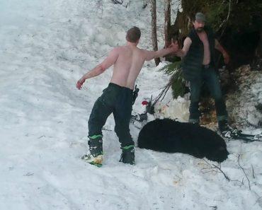 Pai e Filho Matam Urso e Crias Enquanto Hibernavam e São Apanhados Por Câmara Oculta 5