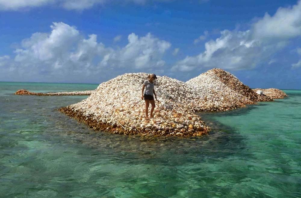 Conheça a Ilha Totalmente Composta Por Milhões De Conchas 3
