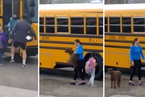 Cabra Tenta Juntar-se Às Crianças Ao Invadir Autocarro Escolar 10