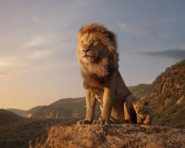 Depois Do Teaser… Veja o Primeiro Trailer Do Filme O Rei Leão 4